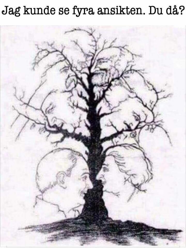 Hur många ansikten kan du se?